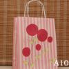 Kraft Gift Bag10