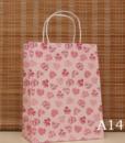 Kraft Gift Bag14