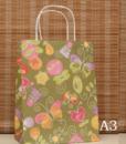 Kraft Gift Bag3