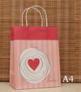 Kraft Gift Bag4