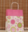 Kraft Gift Bag9